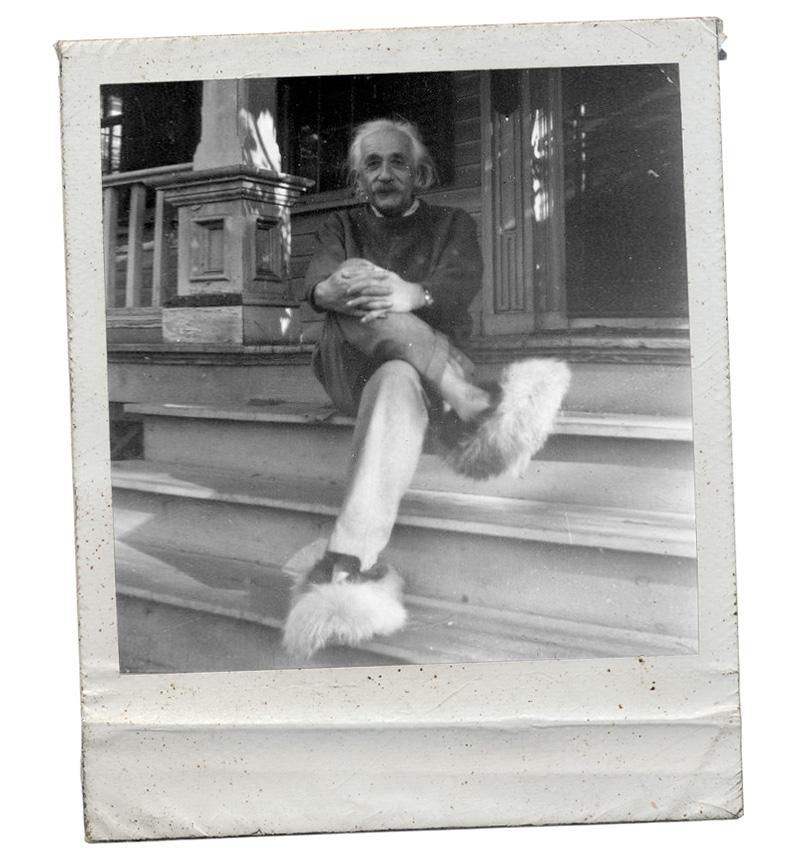 Einstein zapatillas pelo moda
